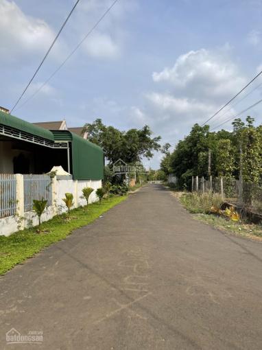 Siêu phẩm làm nhà vườn tại thôn 2 Eakao, diện tích 2220m2 thổ cư 400m2 ngay hồ Eakao ảnh 0