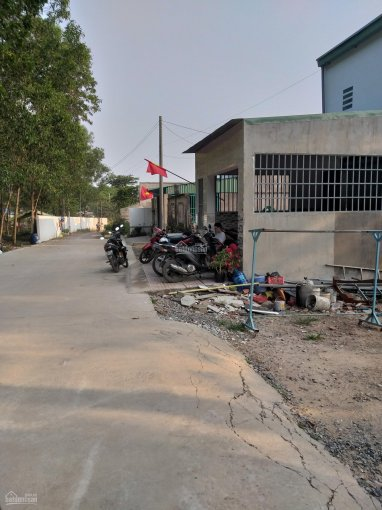 Nhà em bán lô đất ở An Phước ngay Bò sữa Long Thành, đất sổ riêng thổ 110m2, giá TL ảnh 0