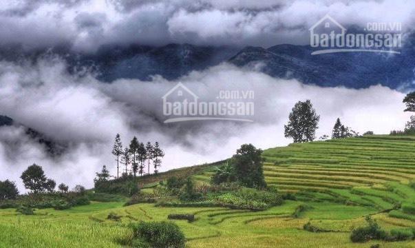 Bán mảnh đất TT hành chính huyện siêu lợi nhuận giá siêu rẻ tại Y Tý, Bát Xát, Lào Cai ảnh 0