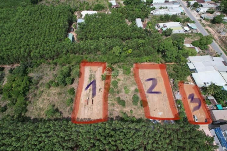 Cần bán 1000m2 đất tại hẻm ô tô đường Hùng Vương, xã Phước An, huyện Nhơn Trạch ảnh 0