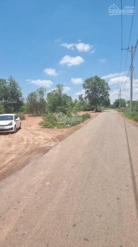 Đất sào Sông Trầu - Trảng Bom, mặt Tiền đường nhựa ảnh 0