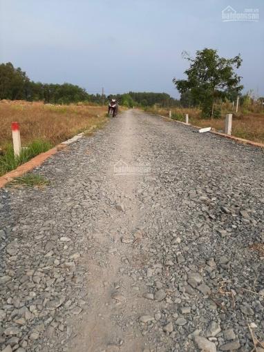 Cần bán gấp 2 lô đất giá rẻ tại xã Vĩnh Thanh huyện Nhơn Trạch tỉnh Đồng Nai, cách phà Cát Lái 6km ảnh 0