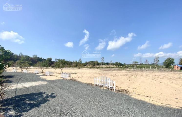 Đất nền thổ cư ven biển Hồ Tràm, sở hữu lâu dài, cách bãi tắm chỉ 300m. LH: 0938.548.700 ảnh 0
