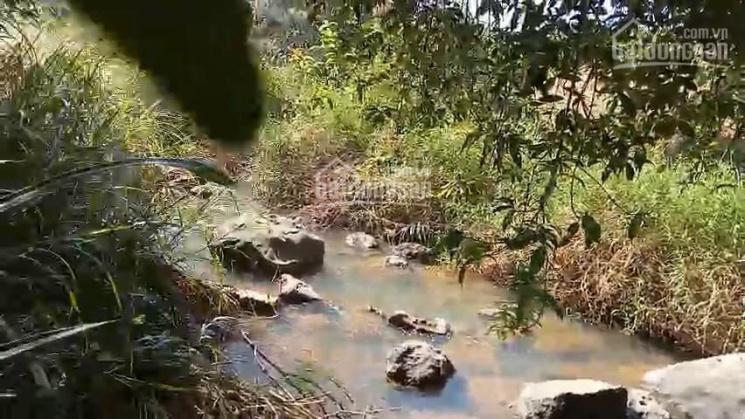 Chủ cần bán lô đất vườn 5,3 ha đã có 400m2 đất xây dựng ở Đại Ninh, Lâm Đồng ảnh 0