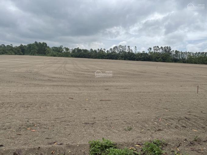 Cần bán lô đất 1 ha cụm công nghiệp Bắc Giang ảnh 0