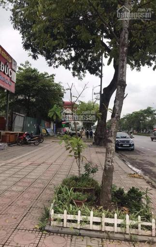 Mặt phố Ngô Gia Tự - Long Biên - 145m2 - 135tr/m2 ảnh 0