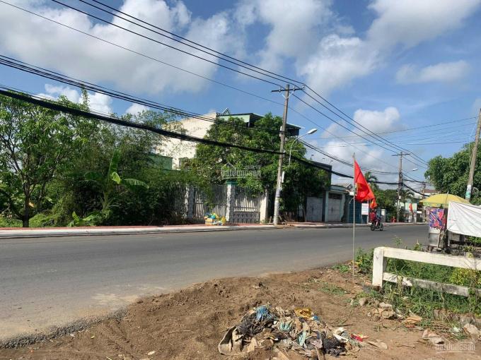 Bán đất đường Trịnh Như Khuê, Bình Chánh, SHR thổ cư 100% ảnh 0
