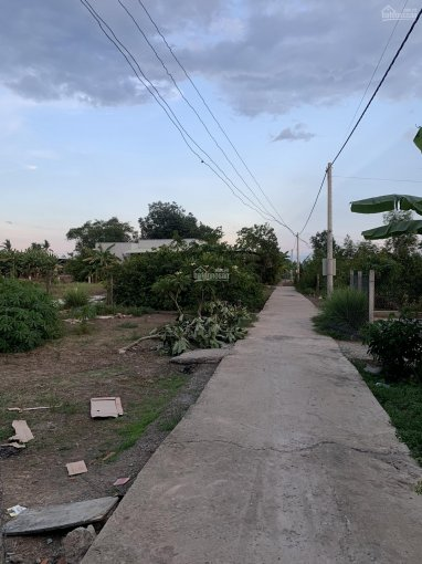 609m2 đất thổ vườn thị trấn Cần Giuộc đối diện chợ Kế Mỹ, SHR, đường xe hơi - Giá: 2,9 tỷ ảnh 0