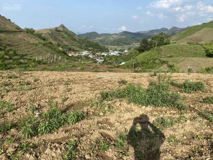 Bán lô đất mặt đường 31m huyện Vân Hồ Mộc Châu SL. DT 1ha có 800m2 đất xây dựng, giá 5,5tỷ ảnh 0
