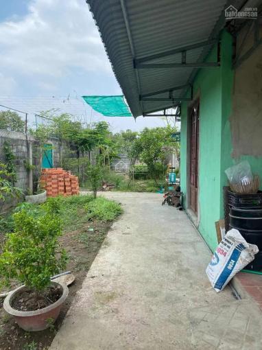 Bán nhà vườn 1500m2 lên được TC 100% gần khu dân cư Cầu Tràm, Cần Giuộc, Long An, đường bê tông 4m ảnh 0
