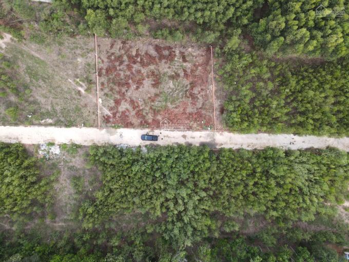Ra nhanh lô đất gần dự án Swan Park, quy hoạch thổ cư, giá sinh viên, LH: 0356.346.379 ảnh 0
