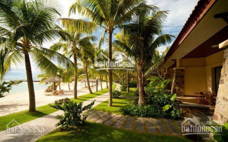 Chính chủ bán gấp căn biệt thự Vinpearl Nha Trang, 7.5 tỷ, view biển đẹp - cần bán gấp cắt lỗ ảnh 0