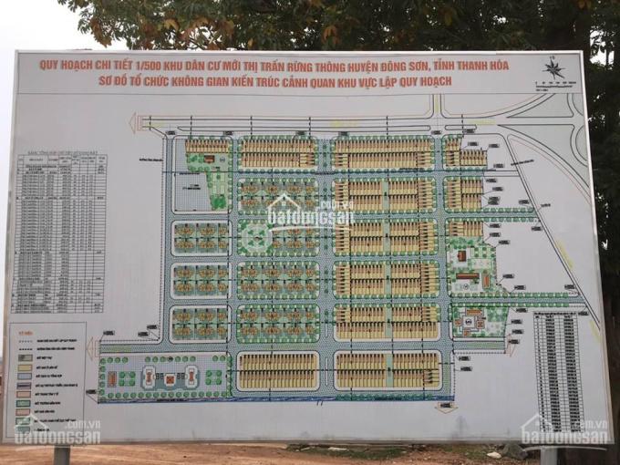 Tôi cần bán 2 lô biệt thự tại MB1879 Đông Sơn, thị trấn Rừng Thông, Thanh Hóa ảnh 0
