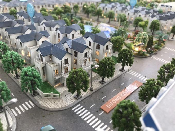 Bán 5 căn biệt thự giá f0 - khu đô thị mới Sân Bay Long Thành ảnh 0