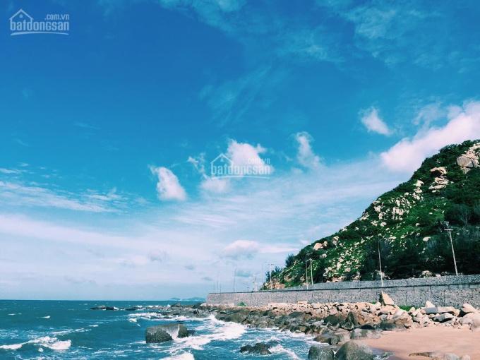 Bán đất biển 2 mặt tiền trước sau, 7.8x20m, 100m ra bãi biển Phước Hải + chợ Hải sản, Đất Đỏ, BRVT ảnh 0