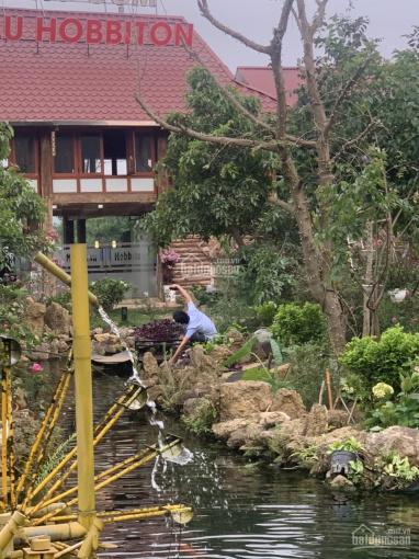 Đất Mộc Châu có thổ cư, phù hợp kinh doanh du lịch, homestay giá siêu rẻ chỉ từ 4, x triệu/m2 ảnh 0