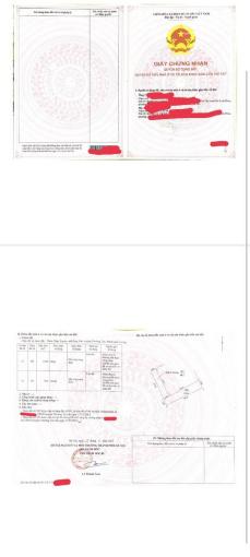 Bán 2 lô đất sổ đỏ đẹp Xâm Xuyên Thường Tín đường ô tô 3.5m ảnh 0
