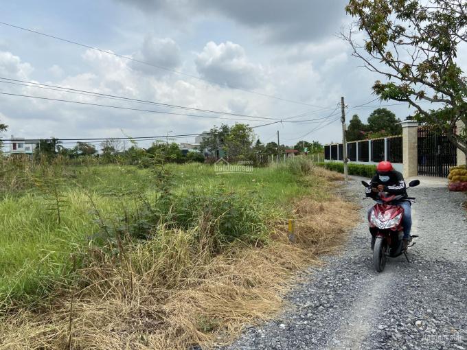 Bán đất đường Đoàn Nguyễn Tuấn Hưng Long Bình Chánh gần The Sol City, giá chỉ 18tr/m2, SHR, 175m2 ảnh 0