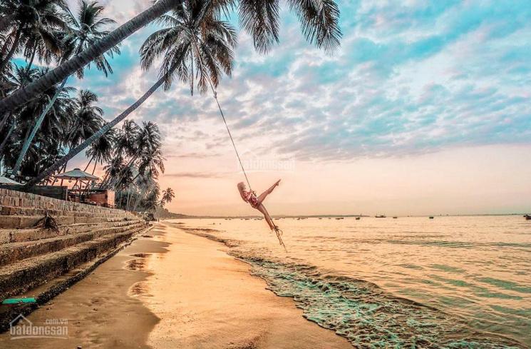 [Đất biển giá rẻ cực hiếm 868 nghìn/m2] duy nhất 1 lô 5.000m2 - cách biển chỉ 500m. LH 0975.005.995 ảnh 0