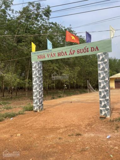 Bán 5 hecta cao su thuộc xã Tân Hưng - Đồng Phú ảnh 0