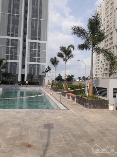 Bán gấp căn hộ Citi Esto - Nhận nhà tháng 6/2021 ảnh 0