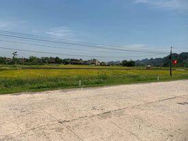 Chính chủ cần bán lô đất 360m mặt tiền 18m tại Nho Quan, Ninh Bình, cơ hội vàng trong làng đầu tư ảnh 0