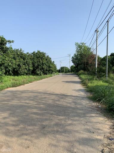 Cần bán 1000m2 mặt tiền đường nhựa gần KCN Phú Cường, Định Quán, Đồng Nai, sổ hồng riêng ảnh 0