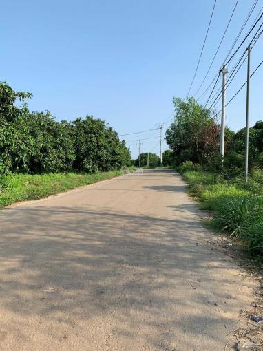 Chính chủ cần bán gấp lô đất 1000m2, gần trung tâm trấn Định Quán, KDL Đá Ba Chồng ảnh 0