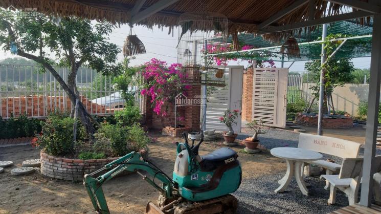Bán nhà vườn 1711m2 ngay DT 826C, có sẵn ao cá, vườn cây, bồ câu, nhà ở, xe hơi vào tới nhà ảnh 0
