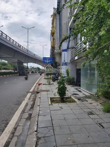 Bán nhà mặt phố Nghi Tàm bên lẻ, MT 7.4m, DT 95m2, giá rao 28.5 tỷ, kinh doanh cực đỉnh ảnh 0
