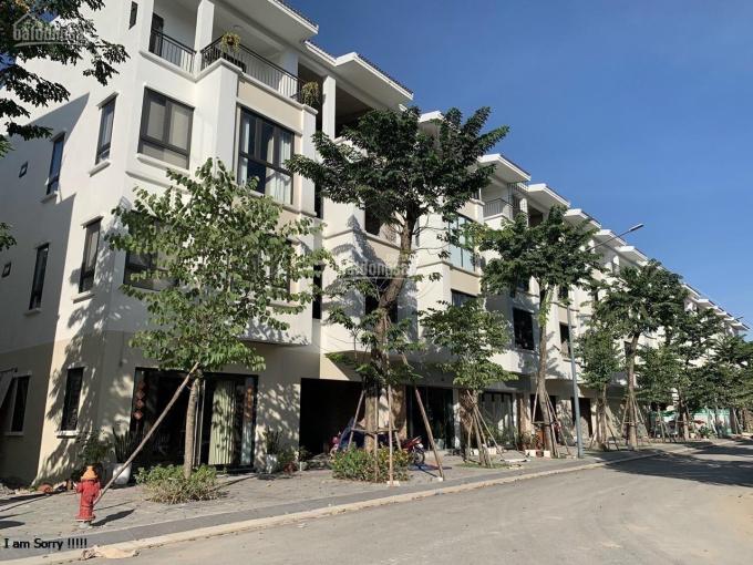Chính chủ bán nhà phố kinh doanh dự án Ecopark Hải Dương giá tốt nhất thị trường ảnh 0