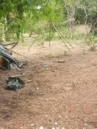 Bán đất xã Hưng Hội, Vĩnh Lợi, Bạc Liêu ảnh 0