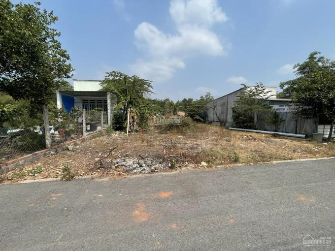 Gia đình cần trả nợ ngân hàng VIB nên bán lỗ lô đất tại Tân Định, đối diện Khu công nghiệp ảnh 0