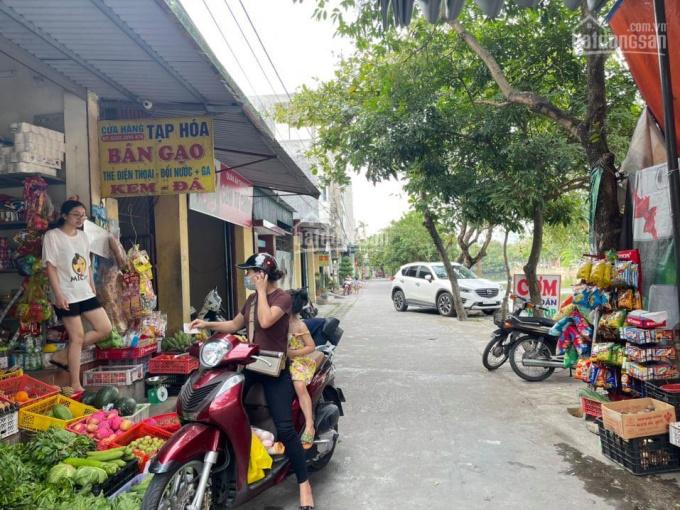 Bán đất 109m2 sổ đỏ chính chủ ô tô đỗ cửa kinh doanh Thanh Bình, Hải Dương ảnh 0