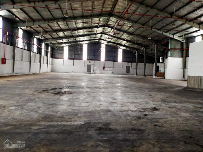 Cho thuê kho/xưởng 1000m2 - 1500m2 - 2000m2 Ao Đôi Bình Tân, container vào ok, mái cao 10m, có PCCC ảnh 0