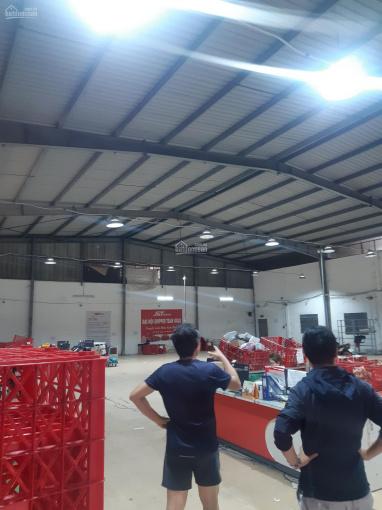 Cho thuê kho xưởng 800m2 có PCCC đạt chuẩn ngay tuyến đường Quang Trung, Phường 8, Quận Gò Vấp ảnh 0