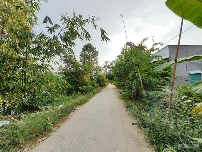Bán nền 119m2 (4.5x26.5, thổ 100m2) đan 3m, xã Tân Hội Trung, H. Cao Lãnh, Đồng Tháp ảnh 0