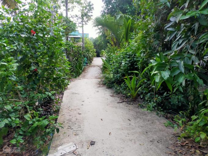 Bán cặp nền đất vườn rộng rãi giá rẻ Cần Thơ, khu vực xã Nhơn Ái, Phong Điền, TP. Cần Thơ ảnh 0