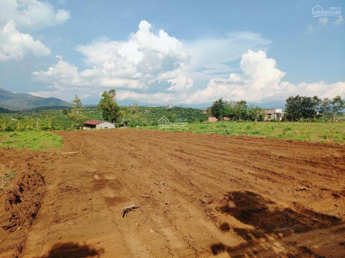 Đất Bảo Lộc - chính chủ - full thổ cư - giá rẻ 450tr/lô 120m2 ảnh 0