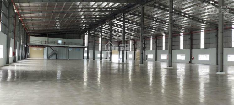 Cho thuê kho xưởng diện tích 700m2, hẻm lớn đường Quang Trung, P. 8 ảnh 0
