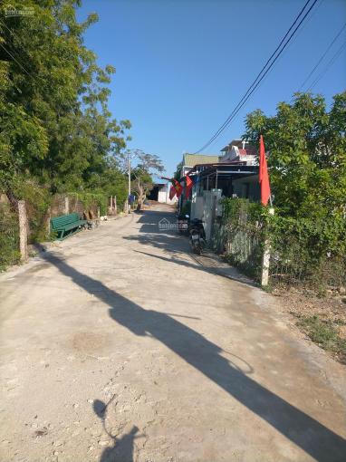 Nhà đất Đô Vinh, Phan Rang, Ninh Thuận giá tốt, 360tr, 110m2. Nhà cấp 4 ảnh 0
