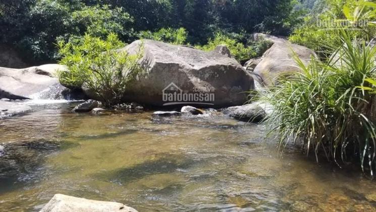 Suối đá Khánh Sơn Khánh Hòa - 820 triệu ảnh 0