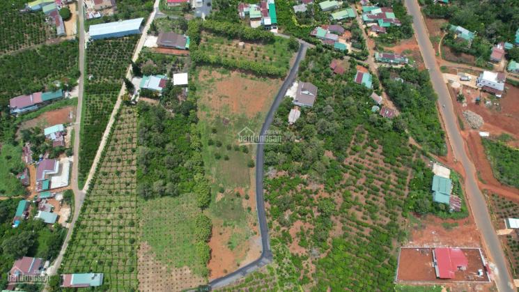 Bán đất thổ cư mặt tiền đường nhựa ở X. Lộc Nga, cách QL 20 chỉ 200m, giá F0. LH 0385002398 ảnh 0