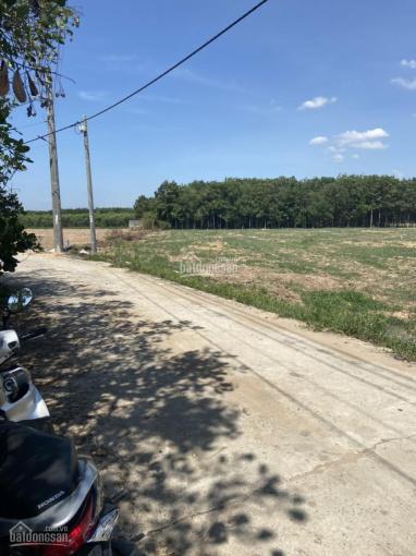 Chính chủ cần bán đất vị trí đẹp ở tỉnh Đồng Nai ảnh 0