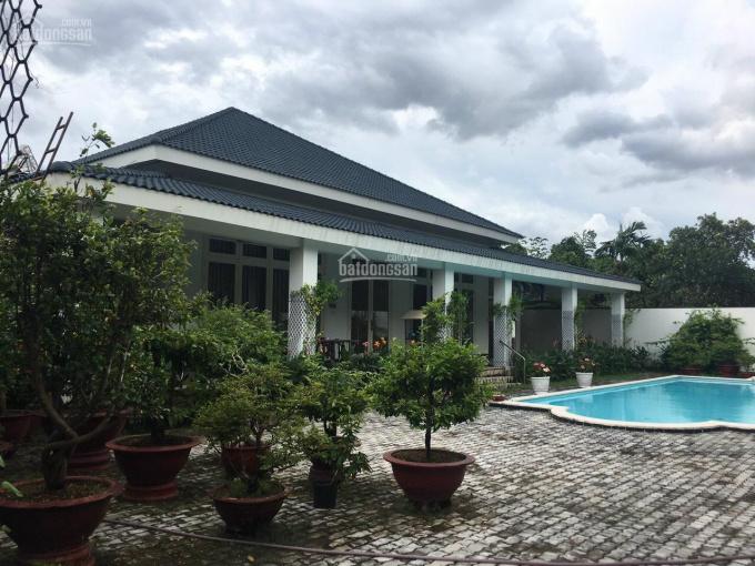 Bán biệt thự hồ bơi Bình Nhâm giáp Lái Thiêu. Giá bán như giá đất, TP Thuận An, Bình Dương ảnh 0