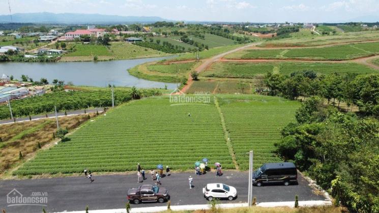 Đất nghỉ dưỡng view đồi thông+ hồ sinh thái, ngay ngã 5 Damri, cách TP Bảo Lộc 10p, VIB trợ giá 70% ảnh 0