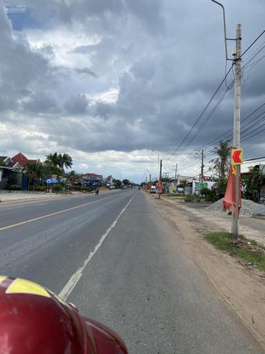 Bán 1 mẫu đất đường nhựa đối diện chợ Xuân Hưng, Xuân Lộc, Đồng Nai ảnh 0