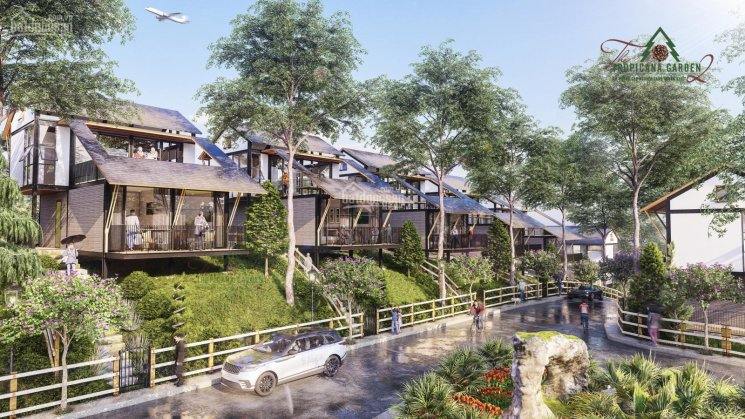 Biệt thự rừng thông sản phẩm nghỉ dưỡng cao cấp đầu tiên của Bảo Lâm, chỉ từ 3,2 tỷ, 0898753198 ảnh 0