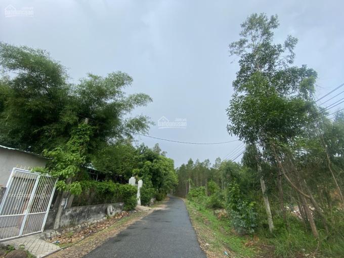 Đất hơn 3 sào phường Phú Mỹ chỉ 5tr/m2 MT nhựa 8m ảnh 0