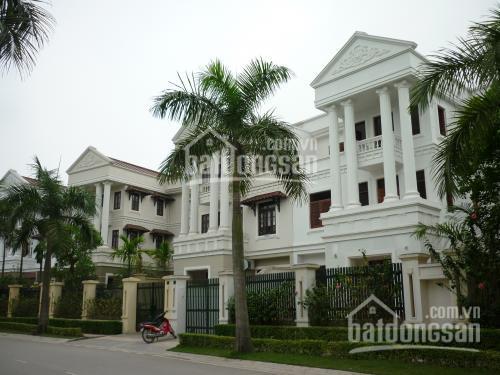 Cho thuê biệt thự tại KĐT Ciputra - quận Tây Hồ, DT 250m2, XD 3,5 tầng 120m2, full đồ. Giá 50tr/th ảnh 0